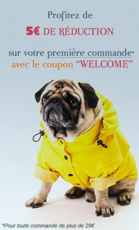 Accessoires pour chiens